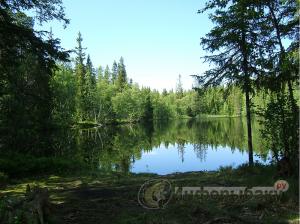 Ловля на лесных озерах