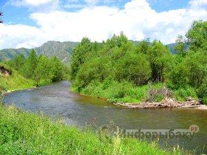 Ловля на реке Чарыш